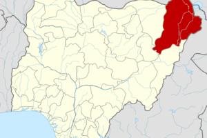 Madman Plays Boko Haram In Borno, Kills 2 Primary School Pupils