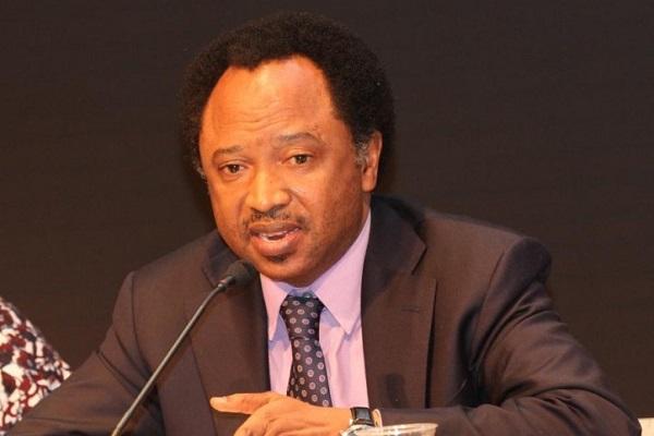 APC National Quashes Suspension Of Senator Shehu Sani