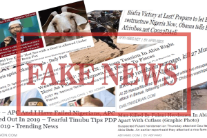 Social Media, Fake News And 2019 Elections, By Deen Adavize